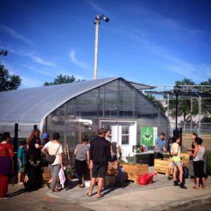 Jardin collectif en avant de la Serre urbaine